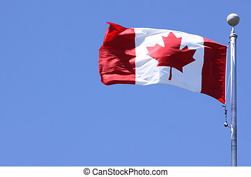 Canadian Flag - The Canadian flag flapping on a windy day...