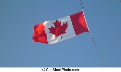Canadian Flag flapping in the wind3
