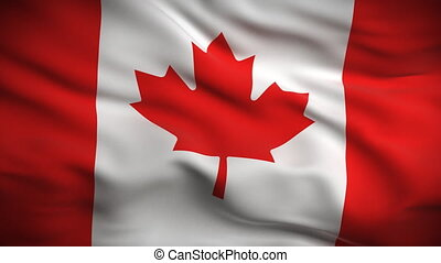 Canadian Flag HD. Looped. - HD 1080. Highly detailed...
