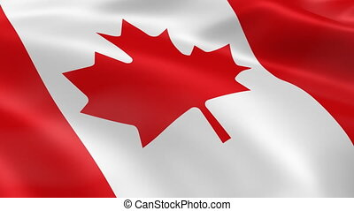 Canadian flag blowing in the wind. Part of a series.