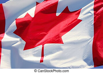Canadian flag in the wind