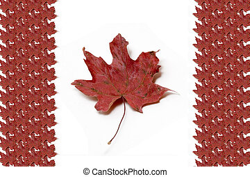Canadian Flag - Canadian flag created from maple leafs -...