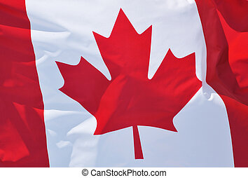 Canadian Flag - Close-up of the Flag of Canada Waving in the...