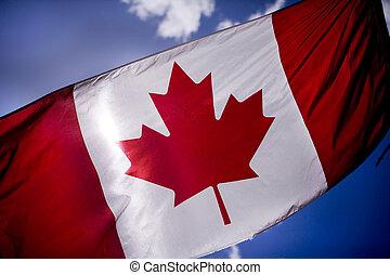 Canadian Flag - Tattered Canadian flag