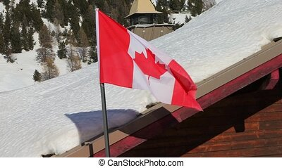 Canadian Flag Waving - Canadian flag waving against snowy...