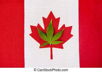 canadian lobogó, noha, cannabis lap