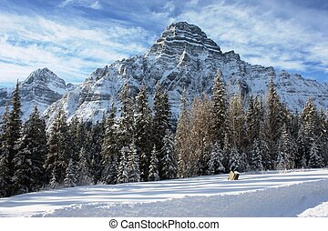 Canadian mountain in front of a frozen lake