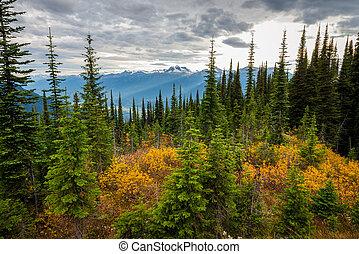 Canadian Mountains Landscape