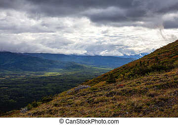 Canadian Nature Landscape