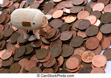 pennies and pig