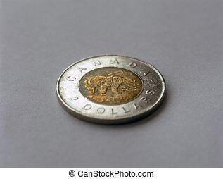 Canadian two dollar coin with polar bear.