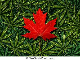 canadien, marijuana, concept