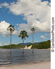 Canaima lagoon, Venezuela