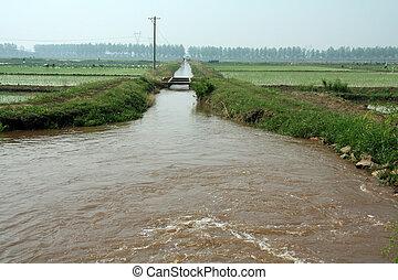 canal, champs, porcelaine