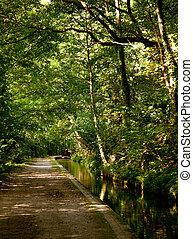 canal, chemin, besides, calme