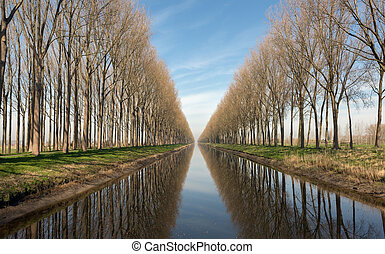 Canal in Belgium near Bruges - Picturesque view on the Damse...