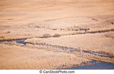 Canals at Razim lake