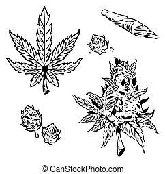 canapa, set, marijuana