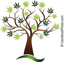 canapa, vettore, albero, marijuana, icona