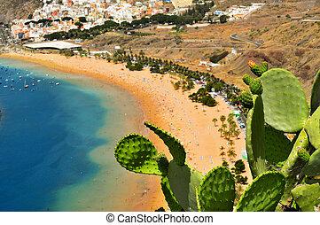 canari, espagne, tenerife, plage, îles, teresitas