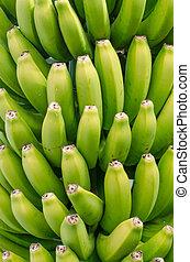 Canarian banana.