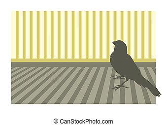 Canary bird 1 vector