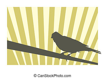 Canary bird 2 vector