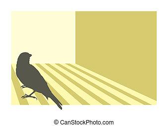 Canary bird 3 vector