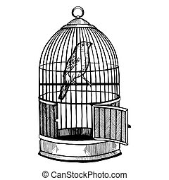 Canary bird in cage engraving vector illustration - Canary...