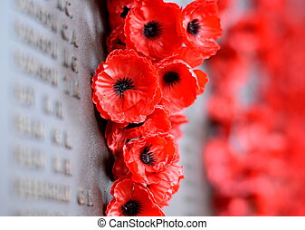 Poppy wall lists the names of all the Australians who died in service of armies