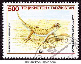 cancelado, tajikistan, selo postal, even-fingered, gecko, lagarto, um