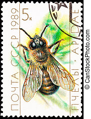 Canceled Soviet Russia Postage Stamp European Honey Bee...