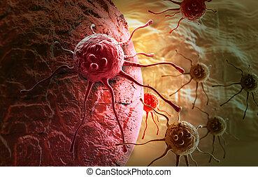 cancer, cellule