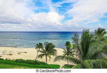 Cancun beach - Sandy beach in Cancun, Mexico