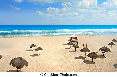 Cancun Mexico Delfines Caribbean beach