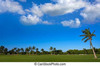 Cancun Mexico Kukulcan blvd golf course - Cancun Mexico...