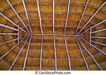 ... Cancun Palapa Roof Hut Dried Grass   Cancun Palapa Roof Hut.