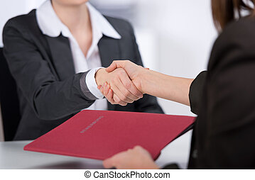 Candidate Shaking Hands With Businesswoman