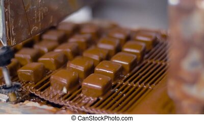candies processing by chocolate coating machine - sweets...