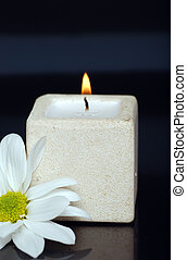 candle and daisy on black