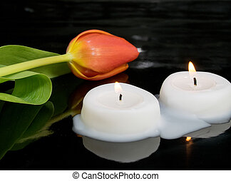 candles with tulip as metaphor and funeral decoration