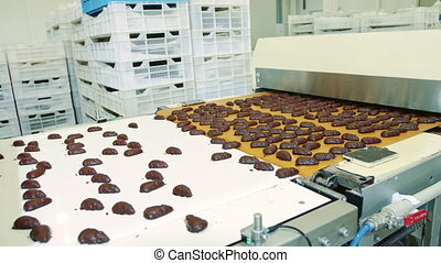 Candy factory. Chocolate candies lying on conveyor.