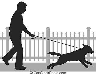 cane ambulante, silhouette, uomo