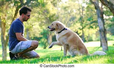 cane, e, suo, proprietario, fare, scossa mano