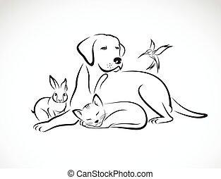 cane, gruppo, animali domestici, gatto, -, uccello, isolato, vettore, fondo, coniglio bianco