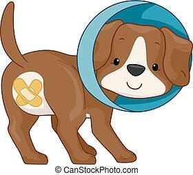 cane, illustrazione, neuter
