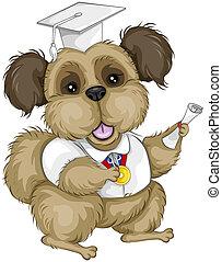 cane, laureato
