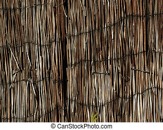cane, natural building material