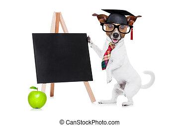 cane, scuola