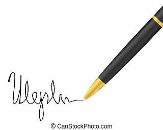 caneta esferográfica, e, assinatura